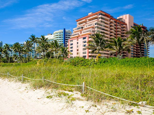 Apartments For Sale In The Alexander Miami Beach